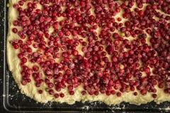 Άψητη πίτα κόκκινων σταφίδων σε ένα τηγάνι πιτών μετάλλων Στοκ Εικόνες