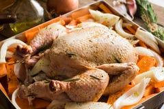Άψητο ολόκληρο κοτόπουλο με μορφή ψησίματος με τα τεμαχισμένα κρεμμύδια γλυκών πατατών καρότων λαχανικών, που καρυκεύονται Στοκ φωτογραφία με δικαίωμα ελεύθερης χρήσης