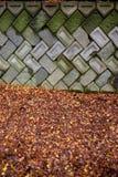 Άδεια σφενδάμνου και πέτρινη σύσταση υποβάθρου βράχου στοκ εικόνα