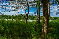 Άλλη φύση Στοκ φωτογραφία με δικαίωμα ελεύθερης χρήσης