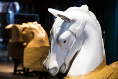 Άλογα ιπποδρομίων υπό εξέλιξη Στοκ Εικόνες
