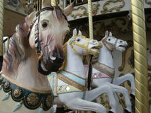Άλογα ιπποδρομίων Στοκ εικόνες με δικαίωμα ελεύθερης χρήσης