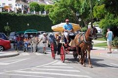 Άλογα και μεταφορές, Mijas στοκ εικόνα