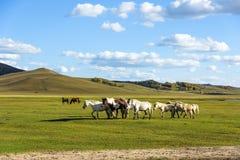 άλογα σε WulanBu όλο το αρχαίο πεδίο μάχη λιβαδιών Στοκ φωτογραφίες με δικαίωμα ελεύθερης χρήσης
