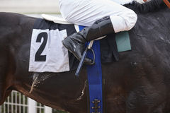 Άλογο αγώνων με jockey πριν από τον αγώνα στοκ φωτογραφία με δικαίωμα ελεύθερης χρήσης