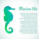 Άλογο θάλασσας Watercolor στοκ εικόνες