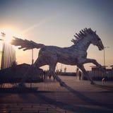 Άλογο θερέτρου στοιχείων Στοκ Φωτογραφία