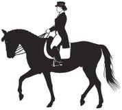 Άλογο και αναβάτης εκπαίδευσης αλόγου σε περιστροφές Στοκ Εικόνες