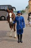 Άλογο και αναβάτης Στοκ φωτογραφίες με δικαίωμα ελεύθερης χρήσης