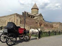 Άλογο και κάστρο Στοκ Εικόνες