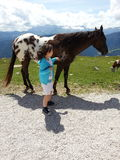 Άλογο και κοριτσάκι Στοκ Φωτογραφίες