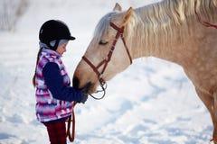 Άλογο και jockey Στοκ φωτογραφία με δικαίωμα ελεύθερης χρήσης