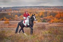 Άλογο-κυνήγι με τους αναβάτες στη συνήθεια οδήγησης Στοκ Φωτογραφίες