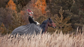 Άλογο-κυνήγι με τους αναβάτες στη συνήθεια οδήγησης Στοκ Φωτογραφία