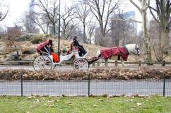 Άλογο μεταφορών πόλεων της Νέας Υόρκης Στοκ Φωτογραφίες