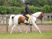 Άλογο οδήγησης κοριτσιών Στοκ Εικόνες
