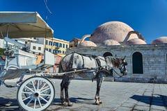 Άλογο στο παλαιό λιμάνι Στοκ Εικόνες