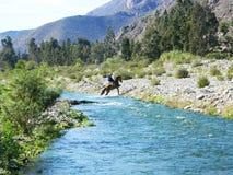 Άλογο το ταξίδι μου Στοκ εικόνες με δικαίωμα ελεύθερης χρήσης