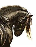 Άλογο απεικόνιση αποθεμάτων