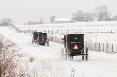 Άλογο Amish και με λάθη, χιόνι, θύελλα στοκ εικόνες