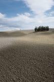 Άλσος κυπαρισσιών d'Orcia Val « Στοκ Εικόνα