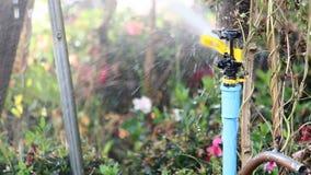 Άλτης νερού απόθεμα βίντεο