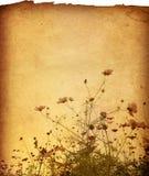 έγγραφο λουλουδιών Στοκ εικόνες με δικαίωμα ελεύθερης χρήσης