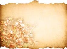 έγγραφο λουλουδιών Στοκ εικόνα με δικαίωμα ελεύθερης χρήσης