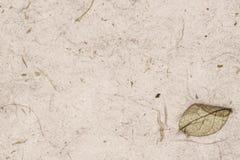 Έγγραφο περγαμηνής Handmaded Στοκ Εικόνες