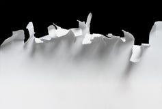 έγγραφο που σχίζεται Στοκ φωτογραφία με δικαίωμα ελεύθερης χρήσης