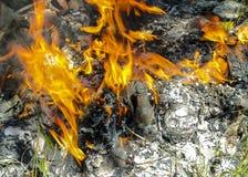 έγκαυμα πυρκαγιάς έξω στοκ εικόνα με δικαίωμα ελεύθερης χρήσης