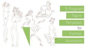 Έγκυα πρότυπα αριθμού για την απεικόνιση μόδας Απεικόνιση αποθεμάτων