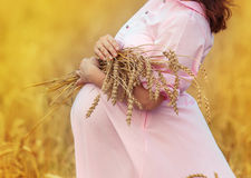 έγκυος γυναίκα κοιλιών στοκ εικόνα με δικαίωμα ελεύθερης χρήσης