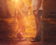 έγκυος γυναίκα κοιλιών στοκ εικόνες με δικαίωμα ελεύθερης χρήσης