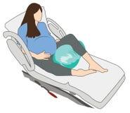 Έγκυος γυναίκα στη σφαίρα φυστικιών θέσης W εργασίας εγκυμοσύνης στο κρεβάτι ελεύθερη απεικόνιση δικαιώματος