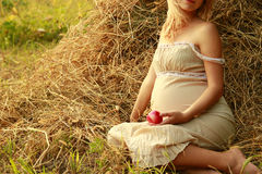 Έγκυος γυναίκα στη φύση κοντά στις θυμωνιές χόρτου Στοκ φωτογραφία με δικαίωμα ελεύθερης χρήσης