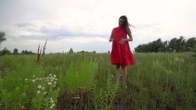 Έγκυος νέα γυναίκα που περπατά μέσω του τομέα απόθεμα βίντεο