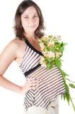 έγκυος όμορφη γυναίκα πο&r Στοκ εικόνες με δικαίωμα ελεύθερης χρήσης