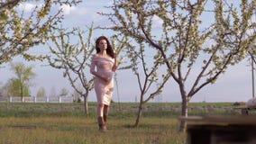 Έγκυο θηλυκό με τους περιπάτους κοιλιών στον ανθίζοντας οπωρώνα μεταξύ των δέντρων την άνοιξη απόθεμα βίντεο