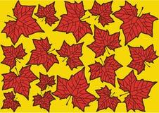 Έγχρωμη εικονογράφηση των φύλλων φθινοπώρου Στοκ Εικόνα