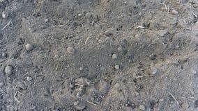 Έδαφος στο πάρκο στη χλόη το πρωί, κάτω από μηά θερμοκρασία Τοπ υπόβαθρο άποψης στοκ εικόνα