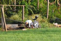 Έδαφος της Farmer στοκ φωτογραφίες με δικαίωμα ελεύθερης χρήσης