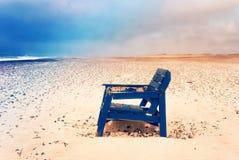 Έδρα στην παραλία Στοκ φωτογραφία με δικαίωμα ελεύθερης χρήσης