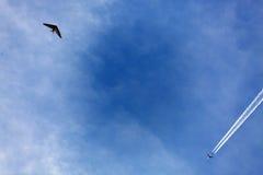 Έκθεση αέρα Στοκ Εικόνες