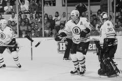 Έκκεντρο Neely, Boston Bruins στοκ φωτογραφία