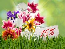 Έκπτωση για την πώληση, έκπτωση 15 τοις εκατό, όμορφες τουλίπες λουλουδιών στην κινηματογράφηση σε πρώτο πλάνο χλόης Στοκ εικόνες με δικαίωμα ελεύθερης χρήσης