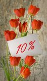 Έκπτωση για την πώληση, έκπτωση 10 τοις εκατό, όμορφες τουλίπες λουλουδιών στην κινηματογράφηση σε πρώτο πλάνο χλόης Στοκ φωτογραφίες με δικαίωμα ελεύθερης χρήσης