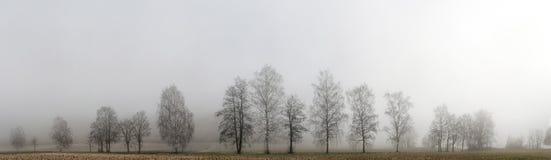 Έκφραση φθινοπώρου Στοκ εικόνες με δικαίωμα ελεύθερης χρήσης