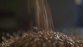 Έκχυση ενός σωρού του φαγόπυρου στο μαύρο πίνακα Σε αργή κίνηση μακρο πυροβολισμός απόθεμα βίντεο