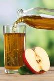 Έκχυση χυμού της Apple από τα μήλα σε ένα γυαλί Στοκ Εικόνα